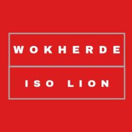 """Turbo - Serie """"ISO-Lion"""" - Brenner In einer Linie"""